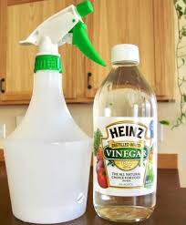 DIY Weed-Be-Gone Spray - Better Alternative